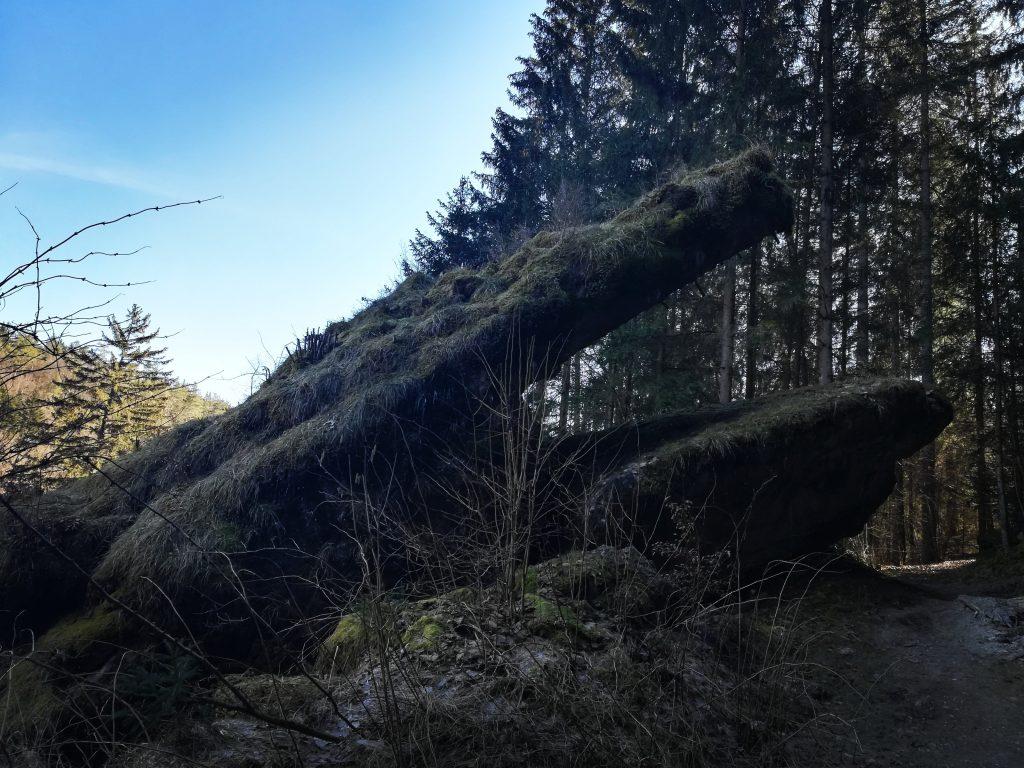 Ein Fels in Form eines aus dem Boden auftauchenden Drachen,  mitten in einem Nadelwald.